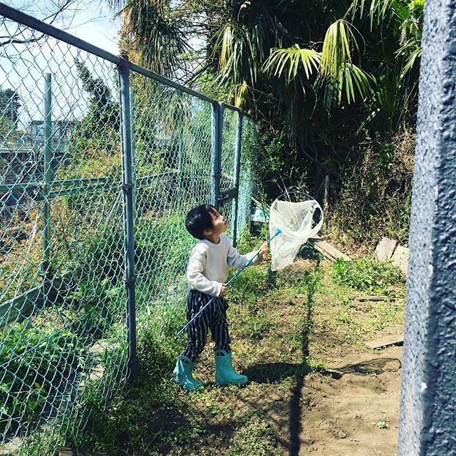 #日課の庭遊び